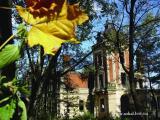 Палац Урбанських